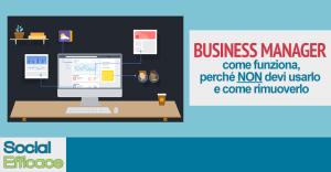 Blog 25 - Business Manager 2