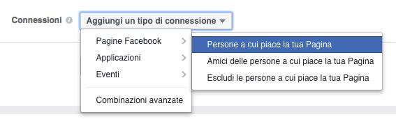 pubblico target facebook - connessioni