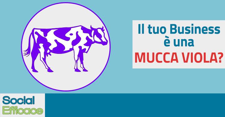 Mucca Viola Blog Post