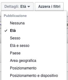 report inserzioni facebook - menu dettagli