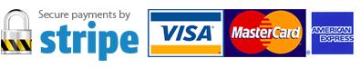 Pagamenti con Carta di Credito protetti da Stripe